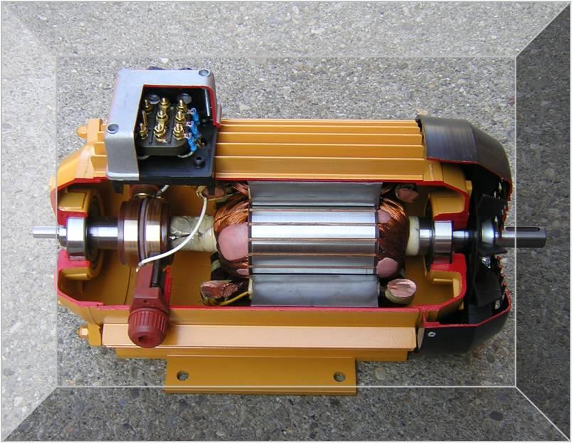 Synchronous Motor Slip